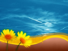 Papel de parede Flores de Verão