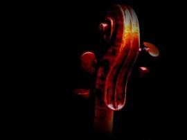 Papel de parede Violino – Pequeno Detalhe