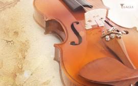 Papel de parede Violino – Instrumento Musical