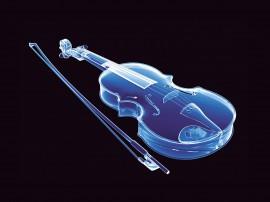 Papel de parede Violino – Raio X