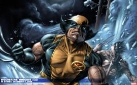 Papel de parede Wolverine – Legal
