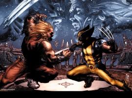 Papel de parede Wolverine – Contra Dentes-de-Sabre