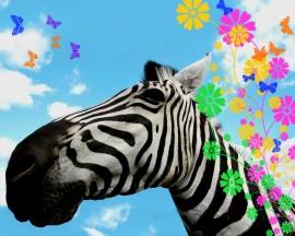 Papel de parede Zebra Florida