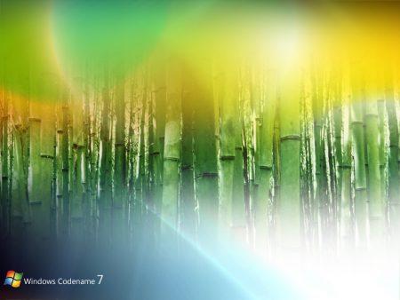Papel de parede Windows 7 Bambu para download gratuito. Use no computador pc, mac, macbook, celular, smartphone, iPhone, onde quiser!