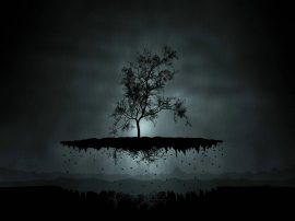 Papel de parede A Árvore