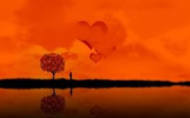 Papel de parede Amor Laranja
