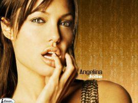 Papel de parede Angelina Jolie #2