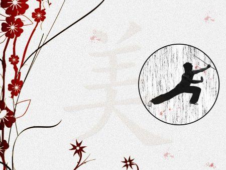 Papel de parede Artes Marciais para download gratuito. Use no computador pc, mac, macbook, celular, smartphone, iPhone, onde quiser!