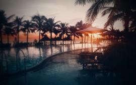 Papel de parede Resort, Praia e Palmeiras