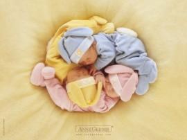 Papel de parede Bebês Dormindo Juntinhos
