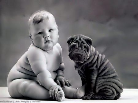 Papel de parede Bebê e Cachorro – Anne Geddes para download gratuito. Use no computador pc, mac, macbook, celular, smartphone, iPhone, onde quiser!