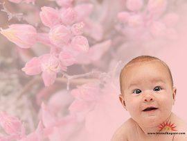 Papel de parede Bebê e flor