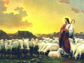 Papel de parede Bom pastor