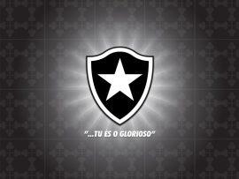 Papel de parede Botafogo Glorioso