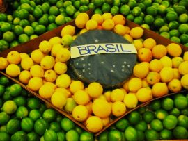 Papel de parede Brasil – Frutas