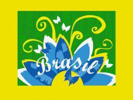 Papel de parede Brasil – Teen