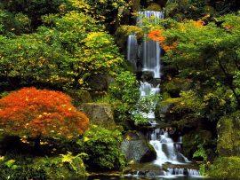 Papel de parede Cachoeira no jardim