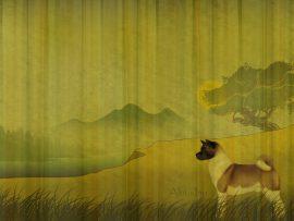 Papel de parede Cão