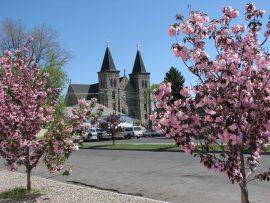 Papel de parede Catedral de Spring