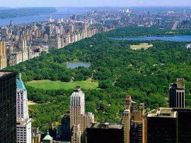 Papel de parede Central Park