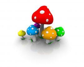 Papel de parede Colorido – Cogumelos