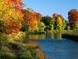 Papel de parede Credit River Ontario