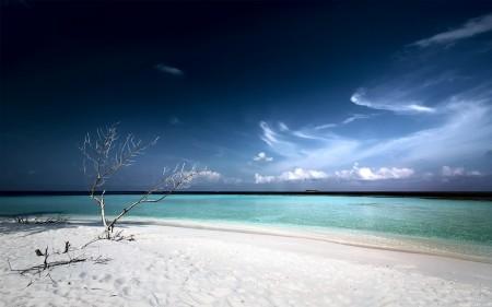Papel de parede Escurecendo na Praia Deserta para download gratuito. Use no computador pc, mac, macbook, celular, smartphone, iPhone, onde quiser!
