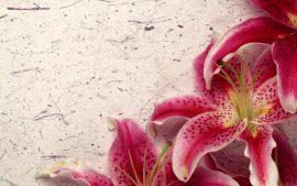 Papel de parede Decor Lily