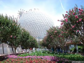 Papel de parede Disney World – Epcot