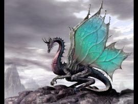 Papel de parede Dragão – Nas Rochas