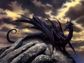 Papel de parede Dragão – Negro