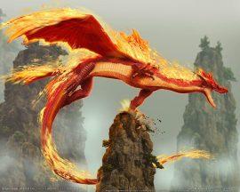 Papel de parede Dragão de Fogo