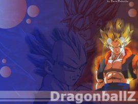 Papel de parede Dragon Ball z Goku e Vedeta