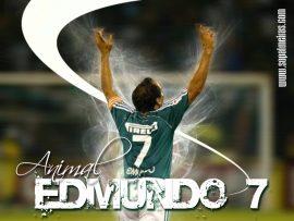 Papel de parede Edmundo Palmeiras #2