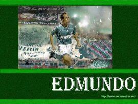 Papel de parede Edmundo Palmeiras