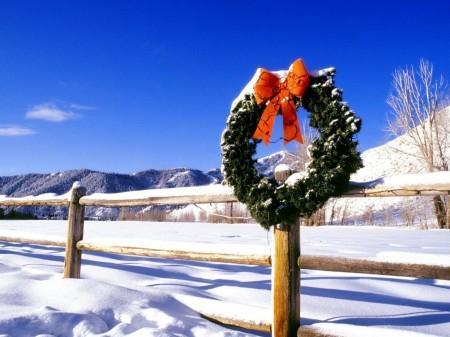 Papel de parede Enfeite de Natal para download gratuito. Use no computador pc, mac, macbook, celular, smartphone, iPhone, onde quiser!