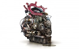 Papel de parede Engenharia do Coração