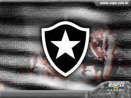 Papel de parede Escudo – Botafogo