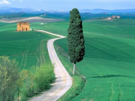 Papel de parede Estrada Rural da Toscana para download gratuito. Use no computador pc, mac, macbook, celular, smartphone, iPhone, onde quiser!