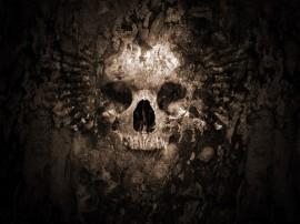Papel de parede Face de Caveira