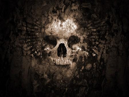 Papel de parede Face de Caveira para download gratuito. Use no computador pc, mac, macbook, celular, smartphone, iPhone, onde quiser!