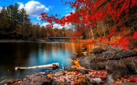 Papel de parede Outono no Lago