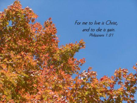 Papel de parede Filipenses 1:21 para download gratuito. Use no computador pc, mac, macbook, celular, smartphone, iPhone, onde quiser!