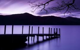 Papel de parede Fim de Tarde Púrpura