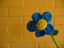Papel de parede Flor Feliz
