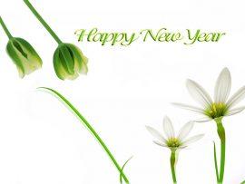 Papel de parede Flores de Ano Novo