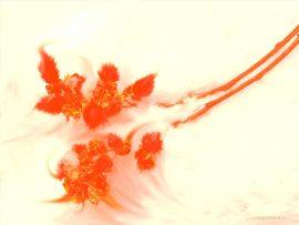 Papel de parede Flores Laranjas