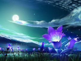 Papel de parede Flores Mágicas