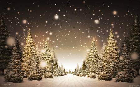 Papel de parede Floresta de Inverno para download gratuito. Use no computador pc, mac, macbook, celular, smartphone, iPhone, onde quiser!