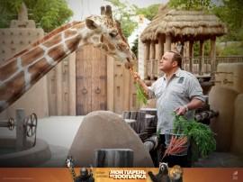 Papel de parede Girafa de O Zelador Animal